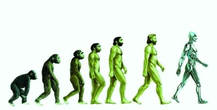 In evolution