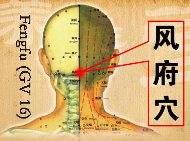 slika 3 fengfu